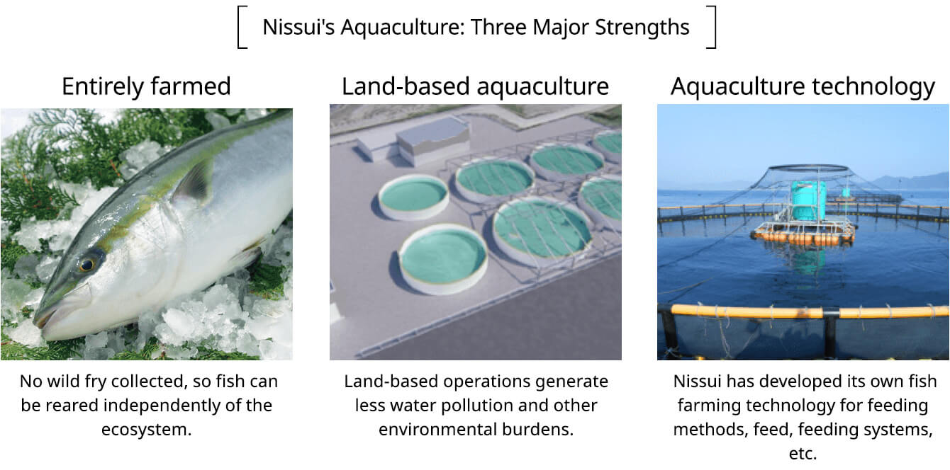 Nissui's Aquaculture: Three Major Strengths Entirely farmed: No wild fry collected, so fish can be reared independently of the ecosystem. Land-based aquaculture: land-based operations generate less water pollution and other environmental burdens. Aquaculture technology: Nissui has developed its own fish farming technology for feeding methods, feed, feeding systems, etc.